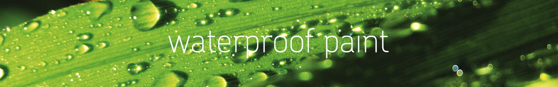 Pimasa Waterproof paint